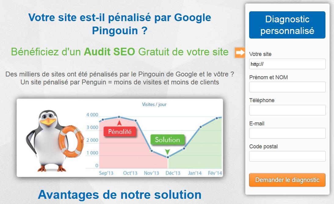 Exemple de site proposant la sortie de pénalité pingouin.