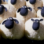 yahoo-bing-moutons